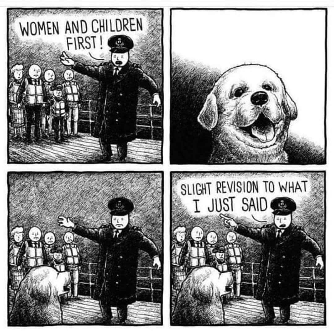 Good doggo - meme