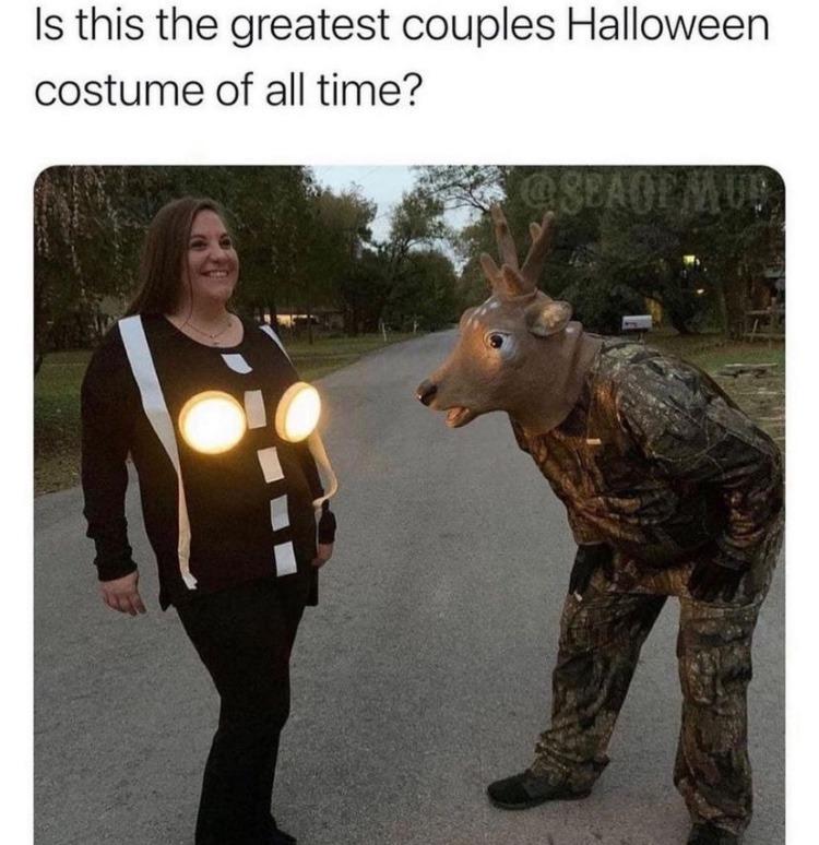 deer in the headlights - meme