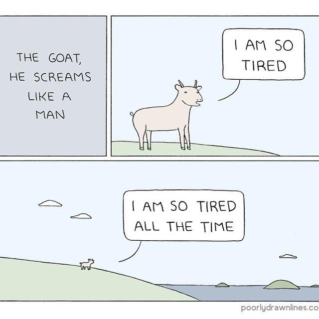 that's my goat - meme