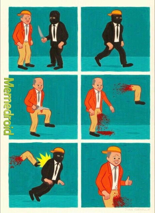 gull - meme