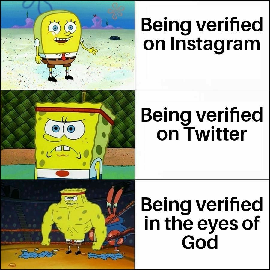 Only verification that matters ✓ - meme