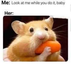 mouse - meme