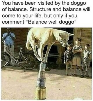 Balance well doggo - meme