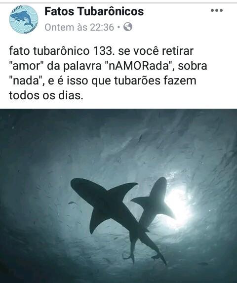 Tubarões... - meme