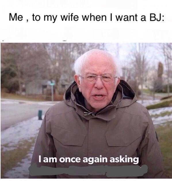 please ? - meme