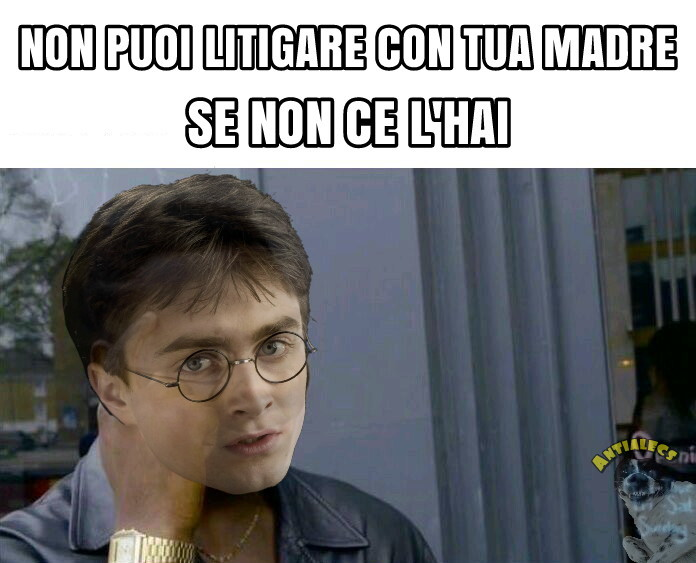 LE MEGA GENIALATE DI HARRY - meme