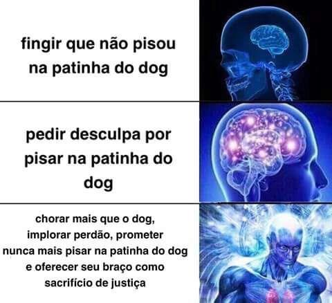 Cachoro - meme