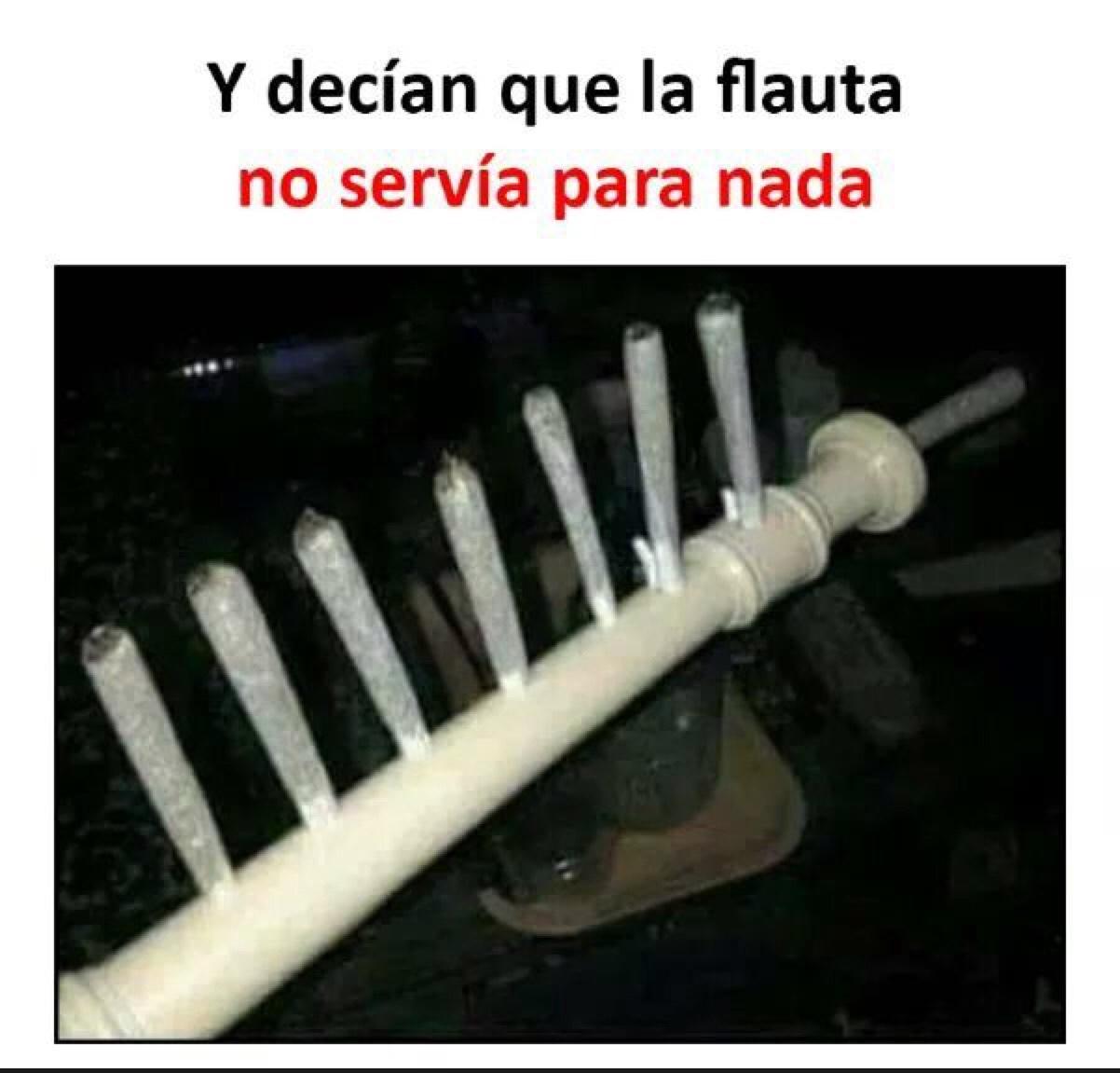 flauta - meme