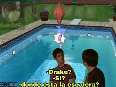 Sims inutiles - meme