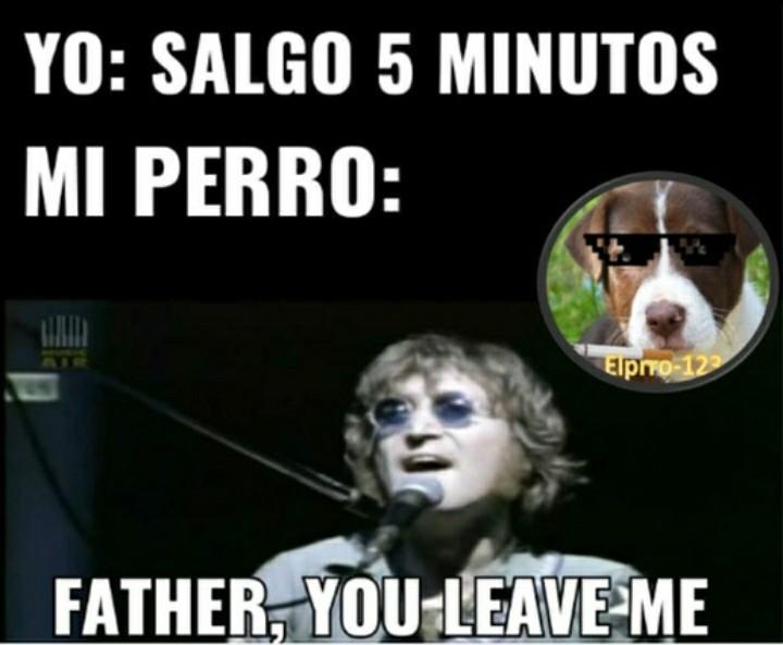 GordoTragaPedos entiende esta referencia - meme