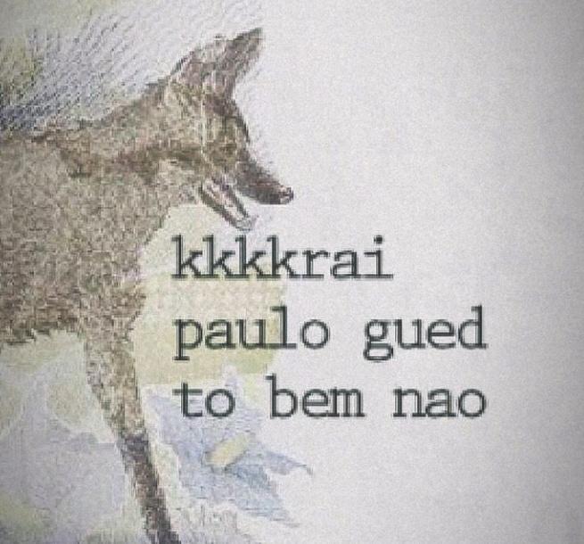 Ajuda o bicho Paulão - meme