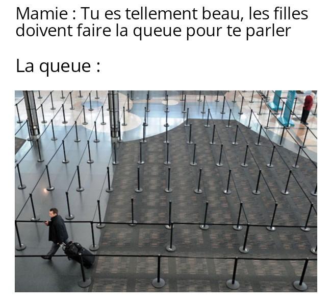 Snif - meme