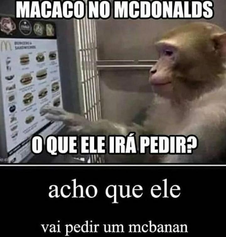 alguém sabe como adquirir um macaco? - meme