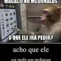alguém sabe como adquirir um macaco?