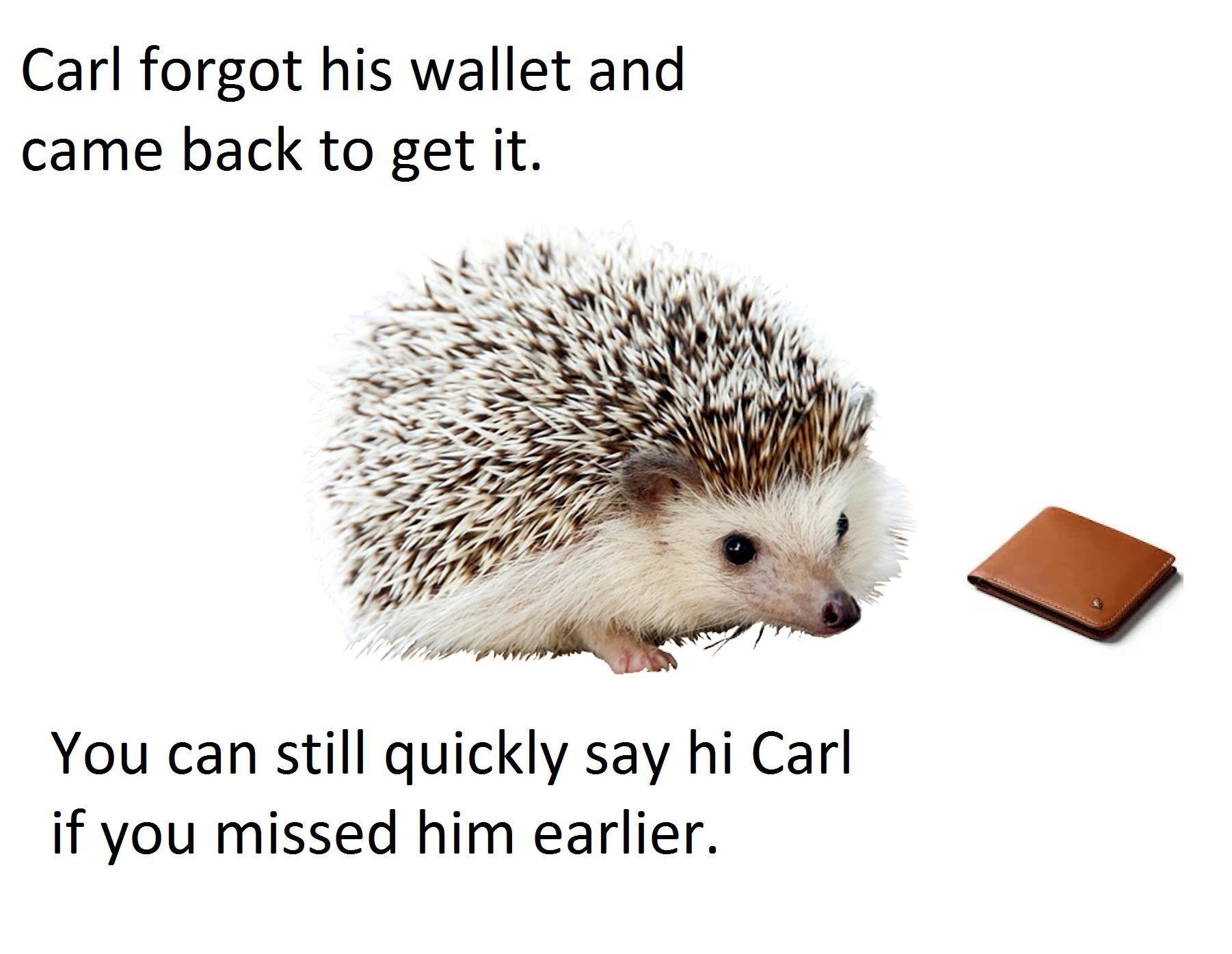 Remember Carl? - meme