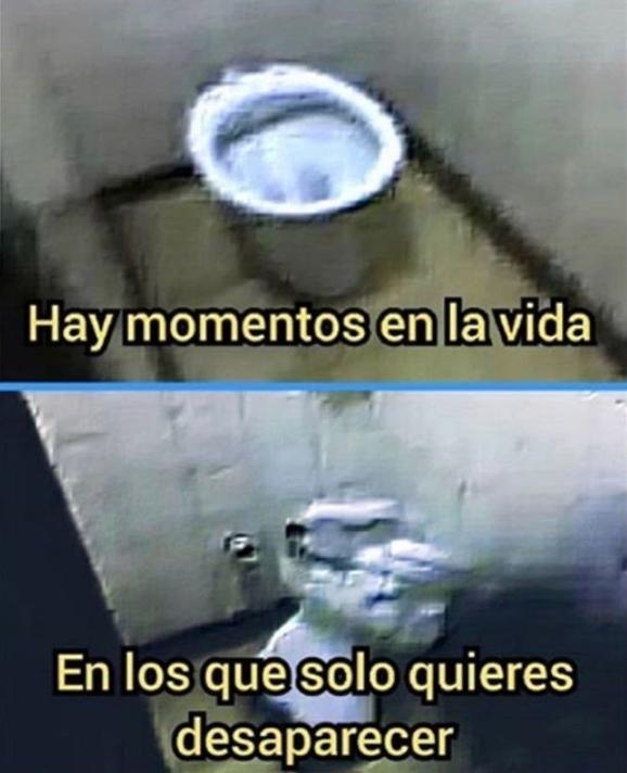 Jaja inodoro hispanoparlante - meme