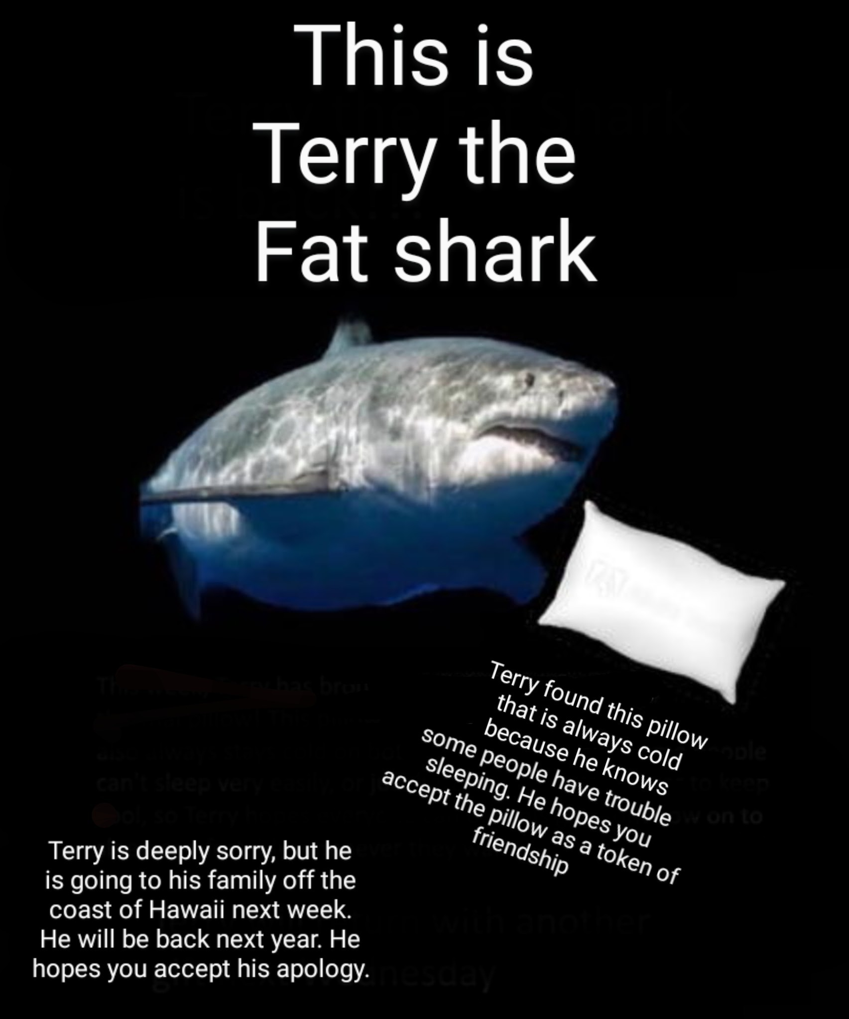 Terry will be thinking of you the whole time - meme
