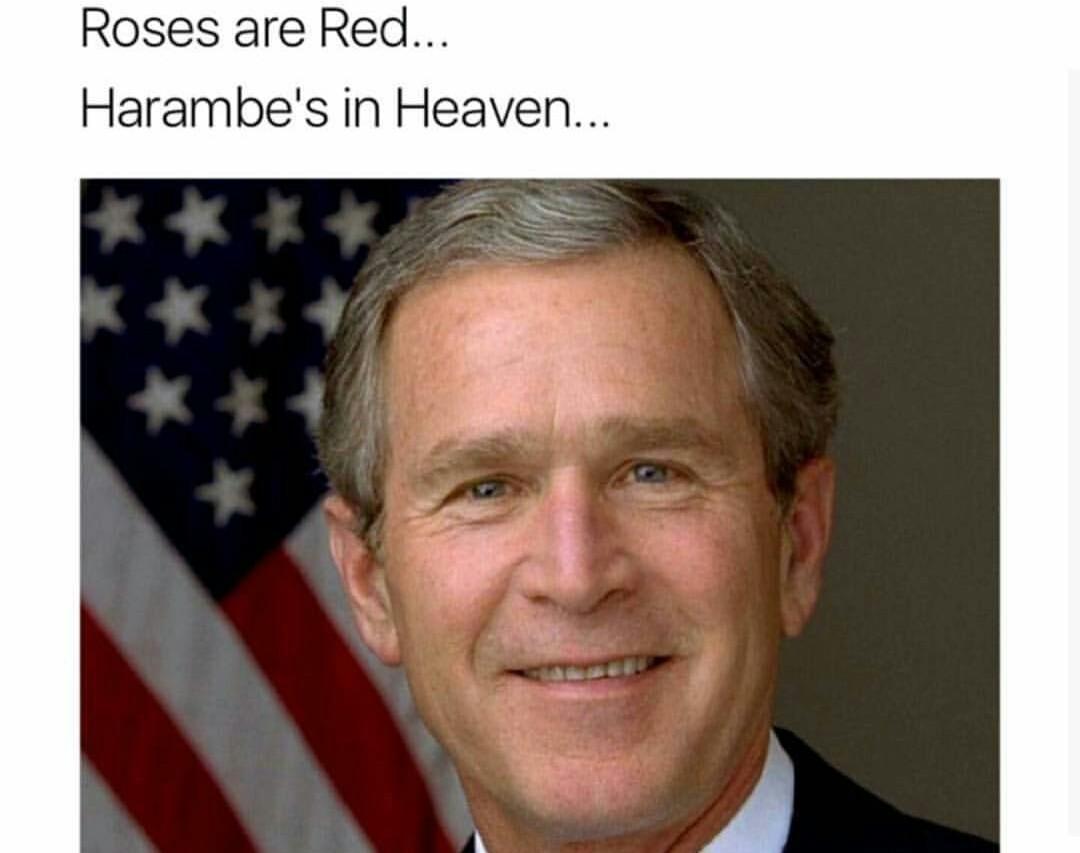 Kennedy did Pearl Harbor - meme