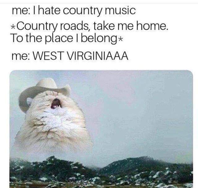 I dont actually hate country music, i just hate rap in any and all languages ( ͡° ͜ʖ ͡°)™ - meme