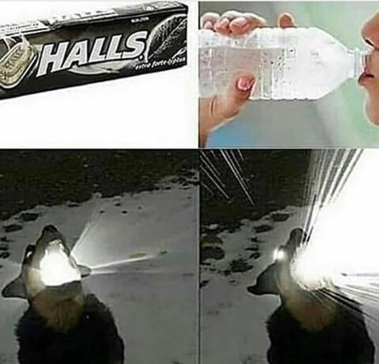 halls+agua=explocion maxima - meme
