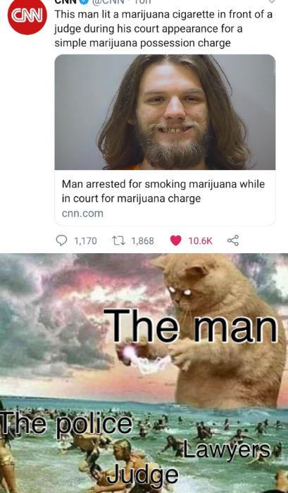 Man arrested for smoking marijuana while in court for marijuana charge - meme