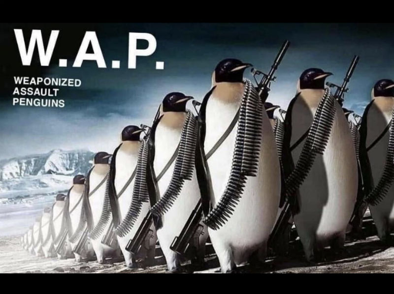 W.A.P stands for Weaponized Assault Penguins - meme