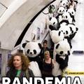 Panda e mia