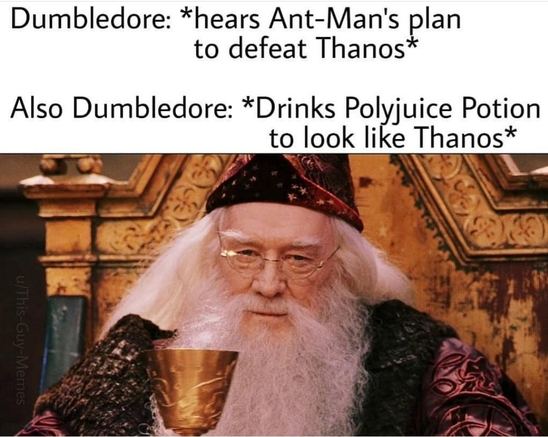 Touche dumbledork - meme