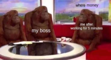 where money - meme
