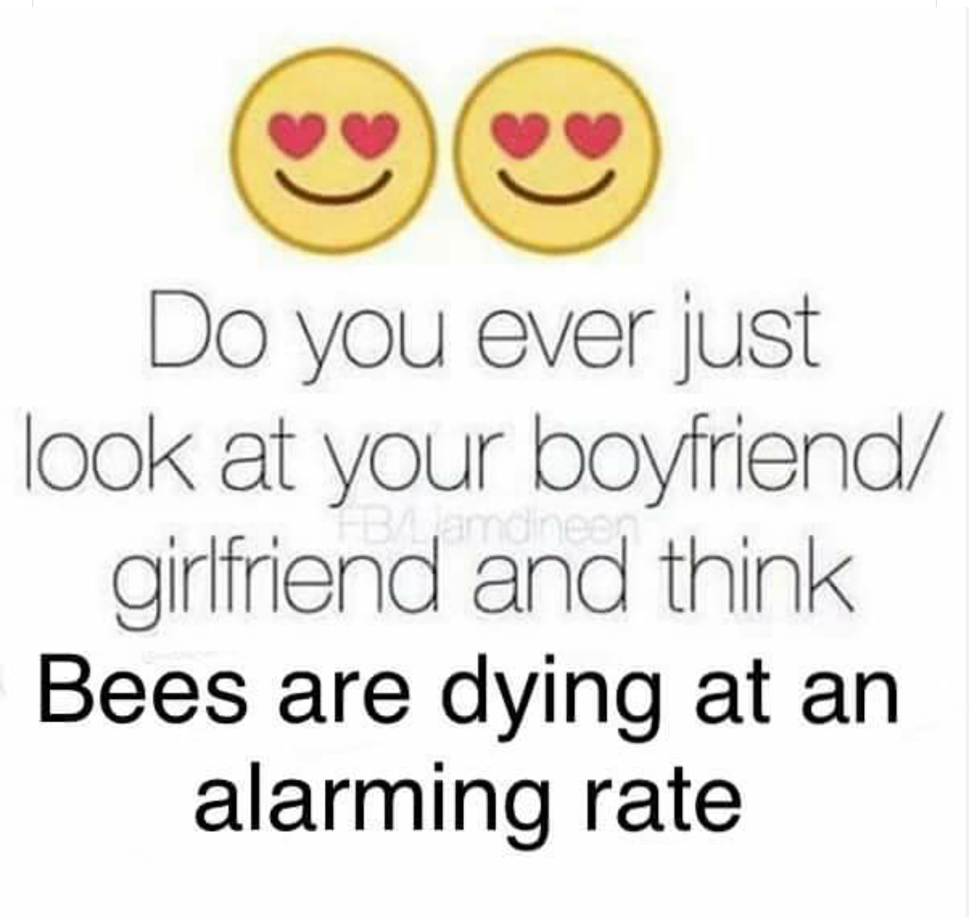 i love bee movie - meme