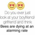 i love bee movie