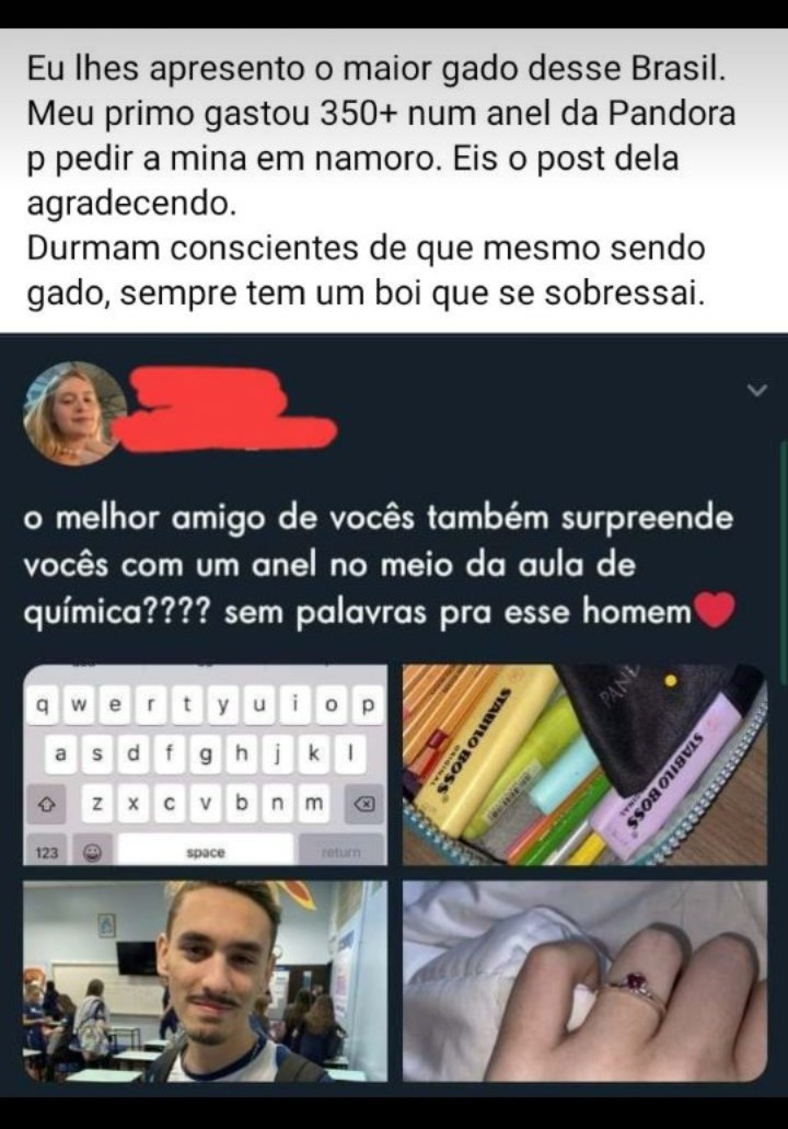 Maior gado do Brasil - meme