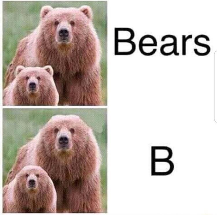 ears - meme