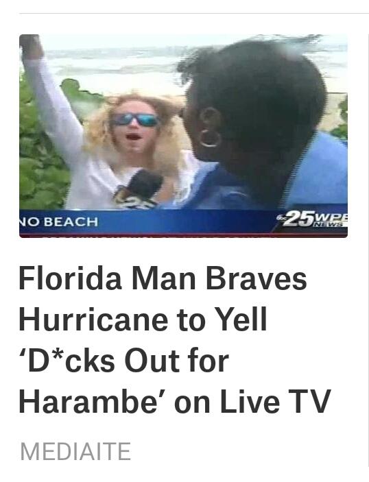 Oh, that Florida Man... - meme