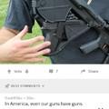 America's Guns