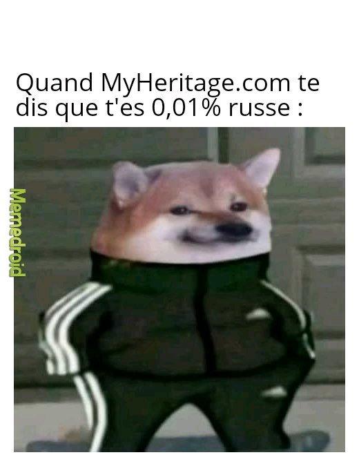 Rejoignez le discord non-officiel mmd fr ! - meme