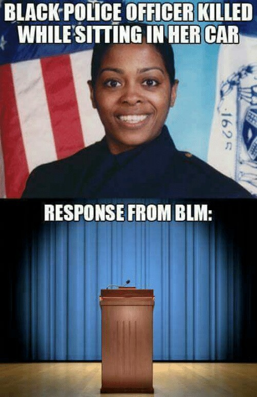 Blm is racist and retarded - meme