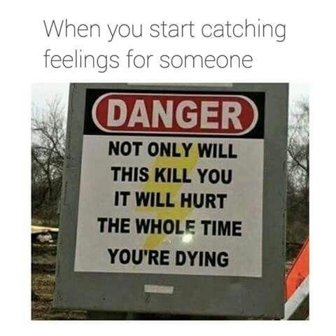 Falling in love be like... - meme