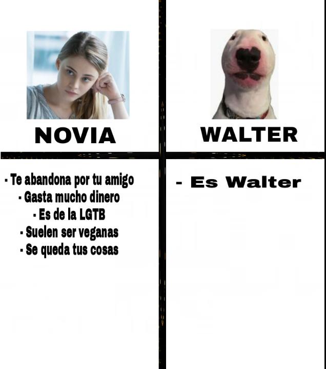 Novia o Walter - meme