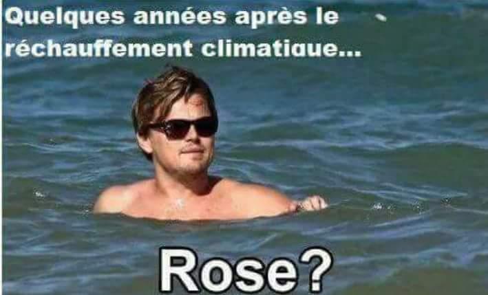 Rose ?! - meme