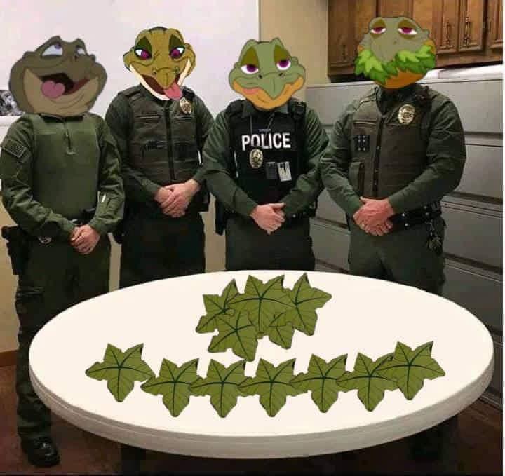 MOTHERFUCK!NG TREESTARS!!!! - meme