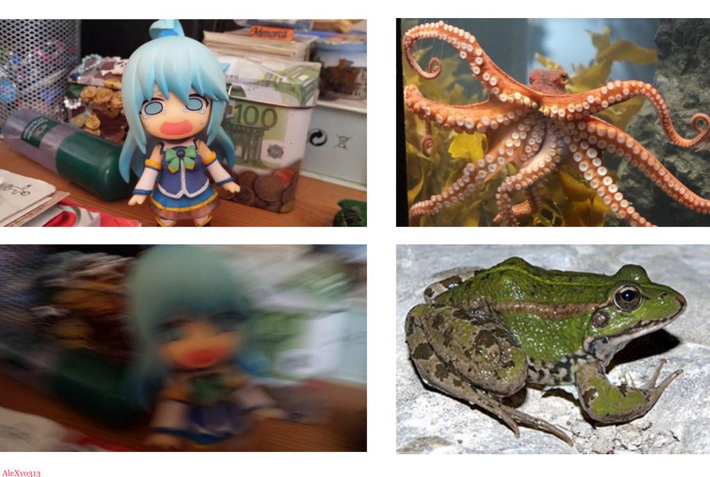 Anime : Konosuba - meme