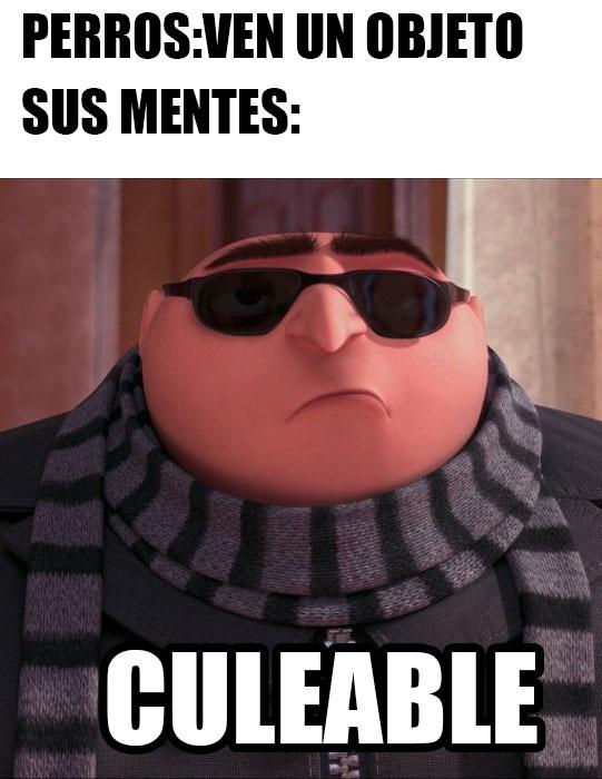 culeable - meme