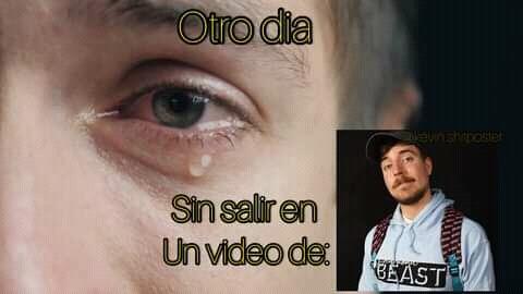 Chales ;-; - meme