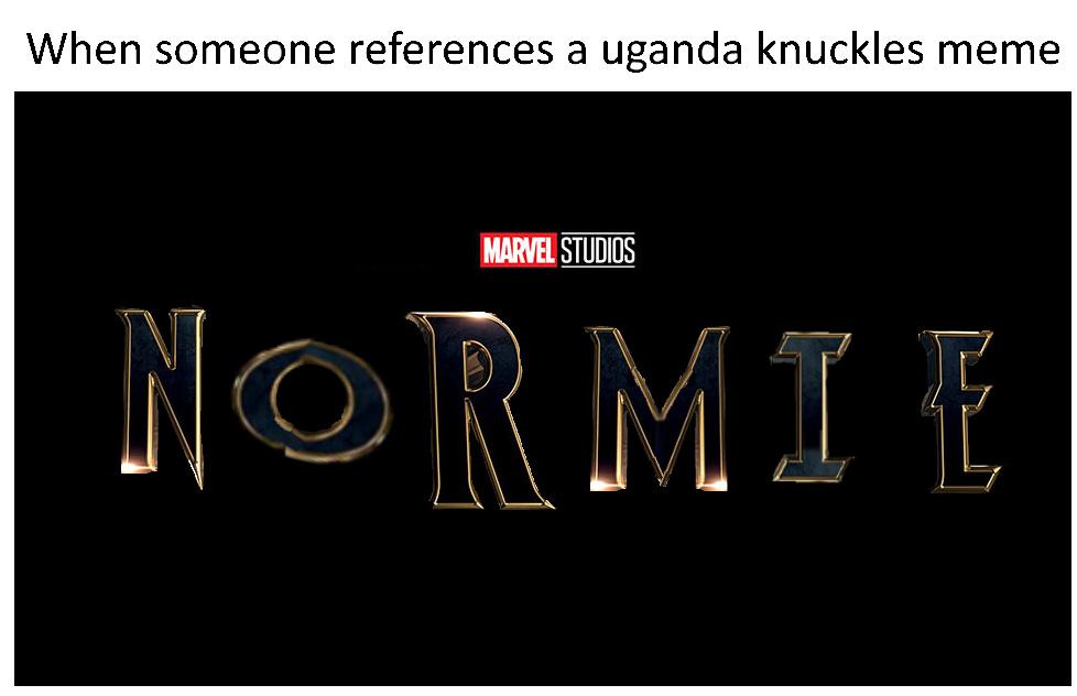 Damn normies - meme