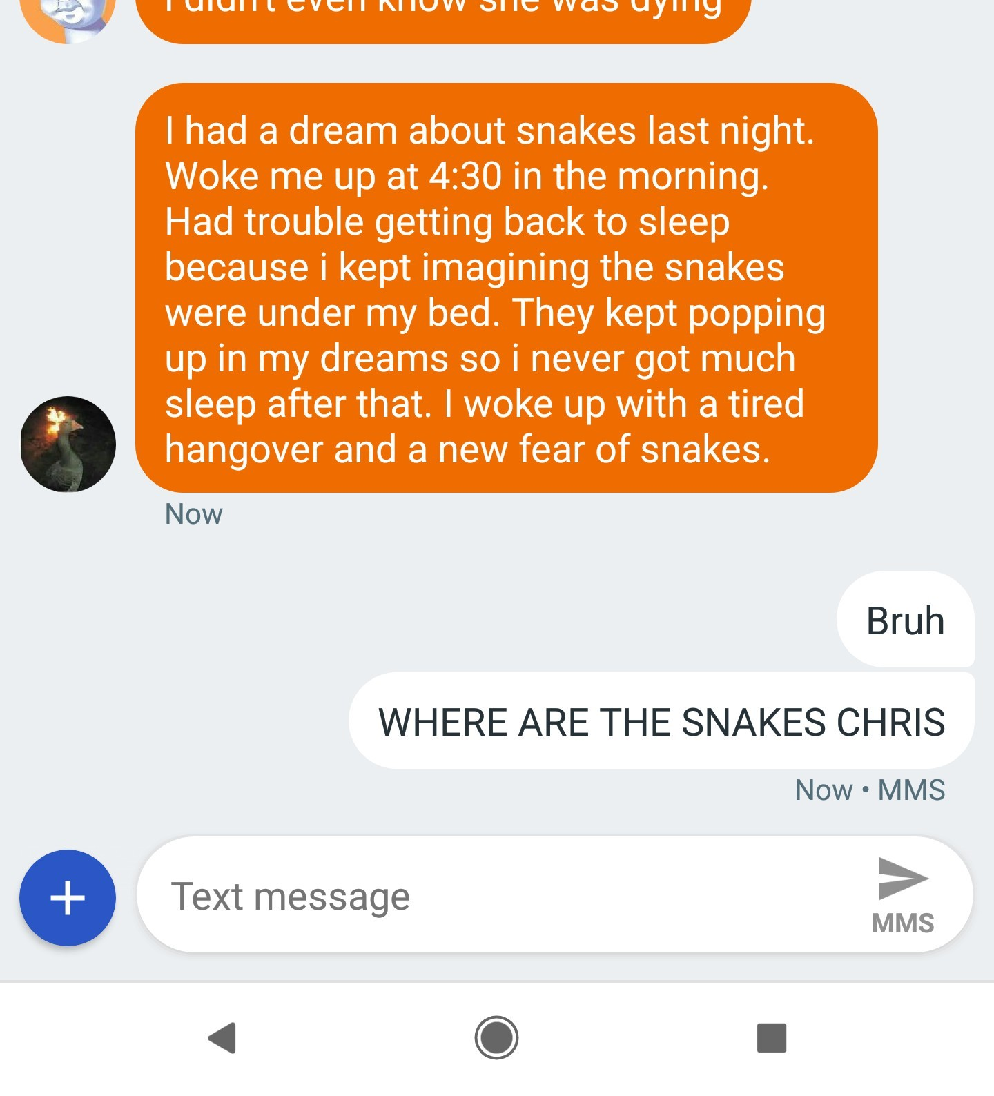 Where are the snakes - meme