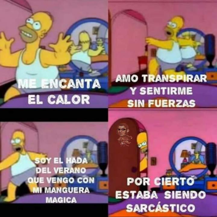 Te Gusta El Calor - meme
