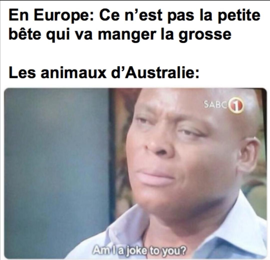 L'Australie - meme