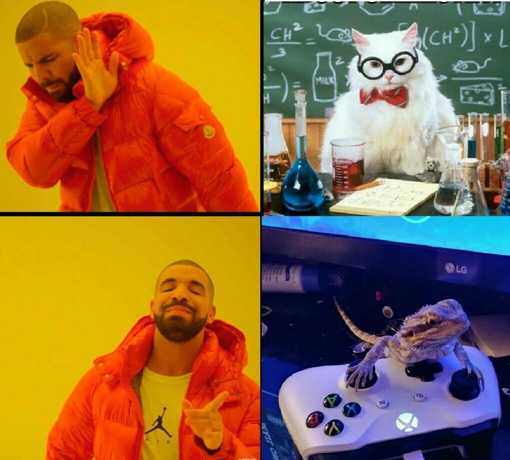 Xbox lezard - meme