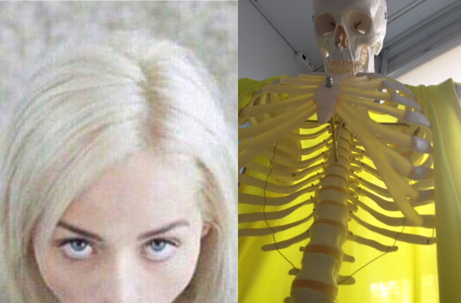 what she sees when shes rattling your bone - meme